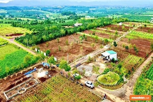 Thị trường nhà đất Phú Quốc nóng lên là thông tin khiến nhiều người chú ý
